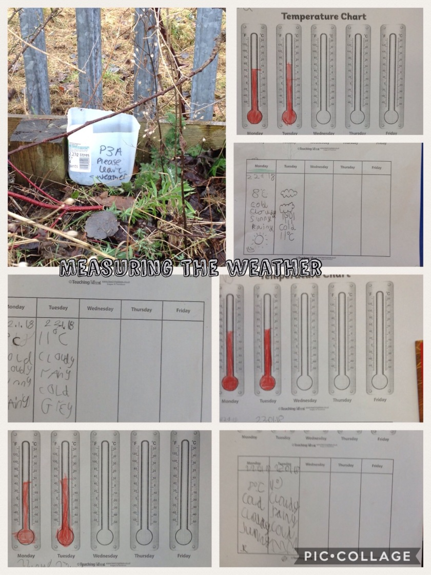 P3A Weather measuring
